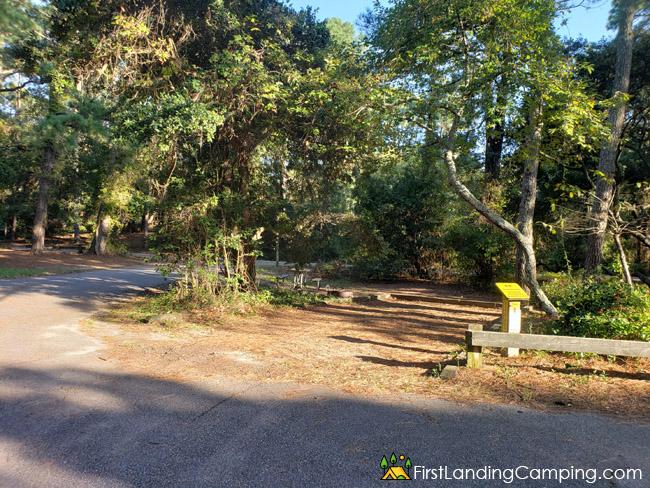 First Landing Campground Site 64