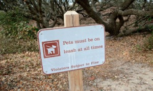 First Landing Camping Pets Sign