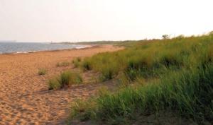 First Landing State Park Beach